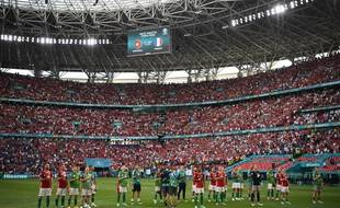 Les supporters hongrois communient avec leurs fans après le match nul contre la France (1-1).