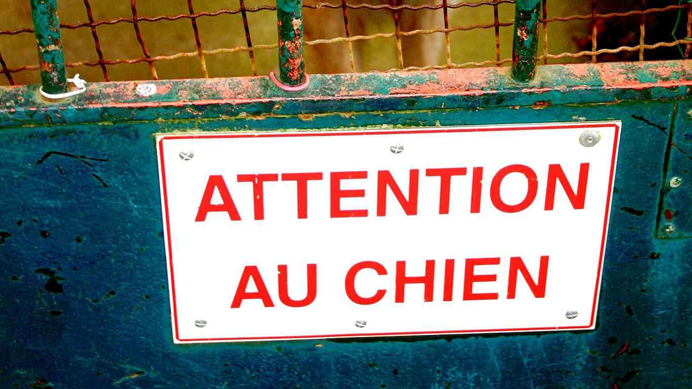 carcassonne un couple attaqu par ses propres chiens. Black Bedroom Furniture Sets. Home Design Ideas
