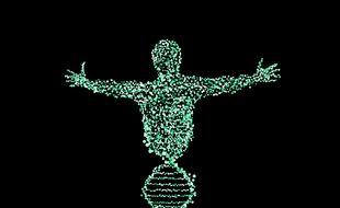 Illustration d'un individu et d'une spirale d'ADN