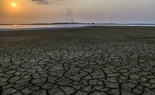 La sécheresse dans cette zone marécageuse de Colombie a été provoquée par le phénomène El Nino en 2016.
