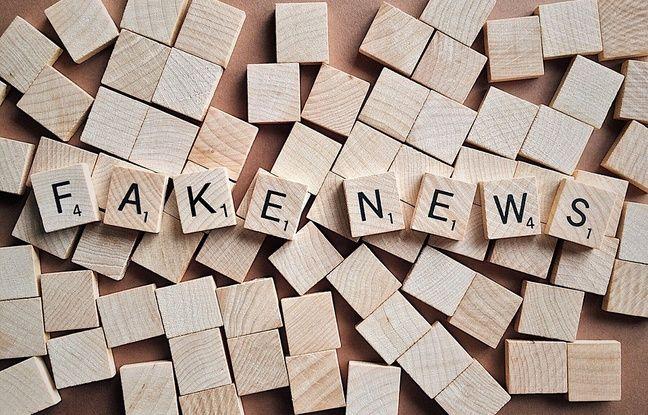 Européennes 2.0: Comment les partis politiques s'organisent pour lutter contre les «fake news»