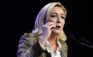 Marine Le Pen, la présidente du Front National, le 17 novembre 2013 à Paris.