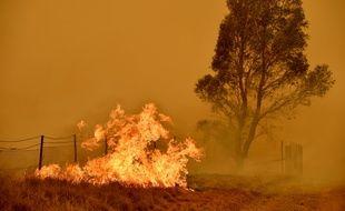 Un incendie dans la ville de Bumbalong, au sud de Canberra, au début du mois de février.