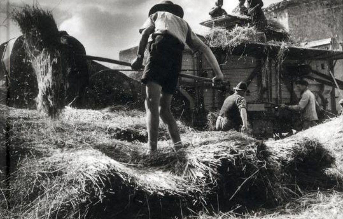 Aveyron, le temps de la terre : 1950-1960 – Le choix des libraires