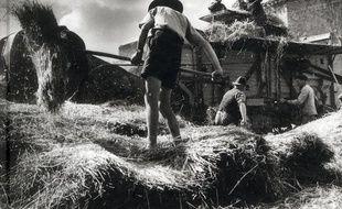 Aveyron, le temps de la terre : 1950-1960