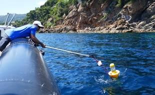 L'enseignant-chercheur varois Yann Ourmieres lâche des bouées pour mesurer les courants autour de Port-Cros.