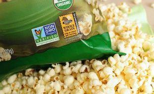 Accusée d'avoir dégagé la voie à la mise en culture d'un nouvel OGM, la Commission européenne renvoie la balle aux Etats et soutient qu'ils pourraient se doter des moyens pour bannir les plantes transgéniques chez eux.
