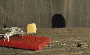 Une tapette et son bout de fromage, devant un trou de souris