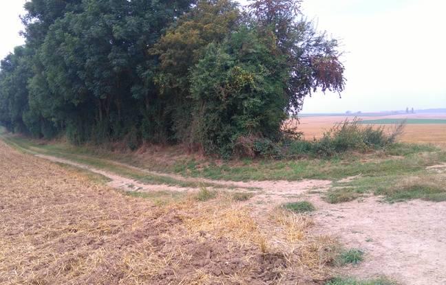 Talus, entre Riencourt et Bullecourt, où le corps des deux soldats a été retrouvé.