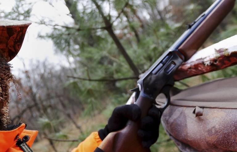 Isère : La partie de chasse au sanglier s'achève dans le sang
