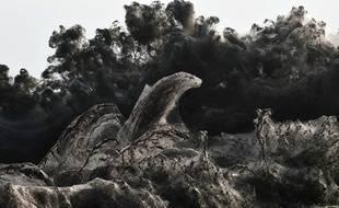 Une toile d'araignée de plus de 1.000 mètres de long recouvrant la route le long du lac Vistonida, près de Xanthi, dans le nord de la Grèce.
