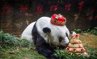 Basi, le plus vieux panda du monde vivant en captivité, est mort le 13 septembre 2017 en Chine à 37 ans.