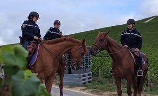 Des cavaliers de la garde Républicaine patrouillent dans les vignes