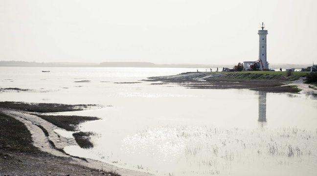 Le site touristique de la baie de Somme vient de devenir Parc naturel