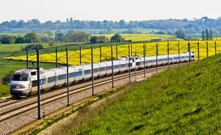 Un TGV en direction de la Bretagne (image d'illustration).