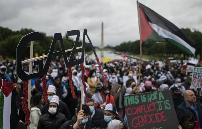 648x415 lors manifestation plusieurs centaines personnes palestine mall washington