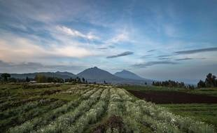 Le parc national de Virunga, en 2016.