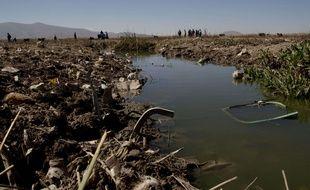Des volontaires nettoient les berges d'une rivière se jetant dans le lac Titicaca en Bolivie, en juin 2015.