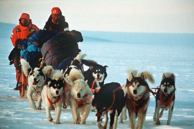 Lors de l'expédition TransAntarctique en janvier 1990.