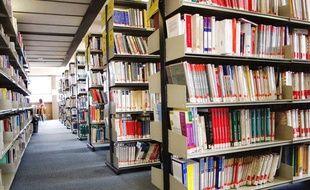Dans un bibliothèque universitaire. Illustration