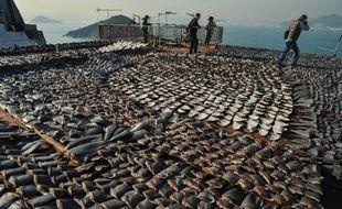 Les défenseurs des animaux se félicitaient lundi de la décision prise par le régime communiste chinois de bannir la soupe d'ailerons de requin des réceptions officielles, en espérant que cette protection s'élargisse à d'autres espèces menacées.