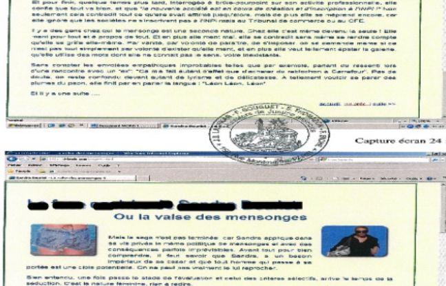Une capture d'écran du faux site.