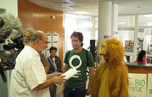 Un Orang-outan a remis les questions à l'enquêteur public