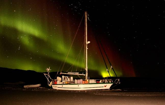Guirec Soudée et sa poule Monique ont vécu quatre mois sur la banquise du Groenland.