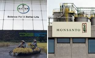 Bayer va supprimer le logo Monsanto, apprend-on ce lundi.