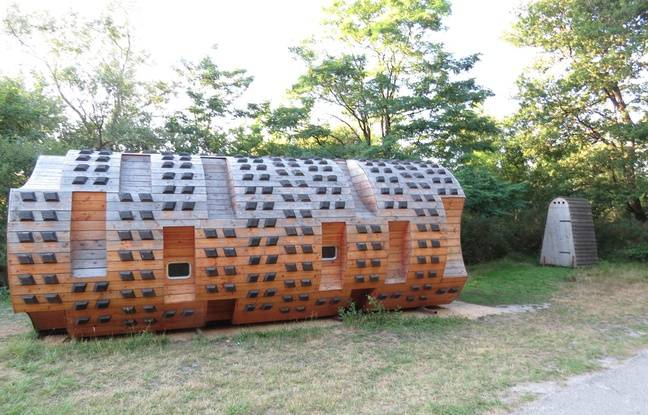 Une nuit au refuge du Tronc creux installé dans le parc du Bourgailh à Pessac.