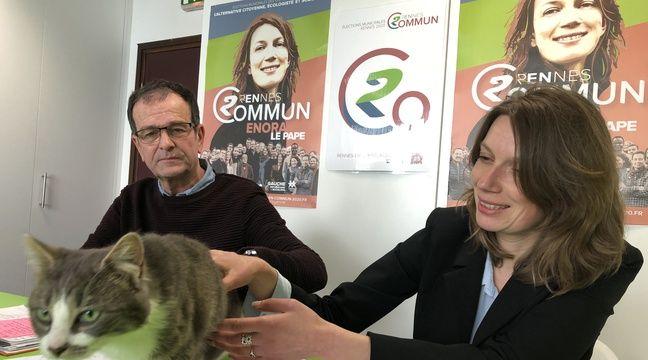 La France insoumise présente un chat sur sa liste aux municipales à Rennes
