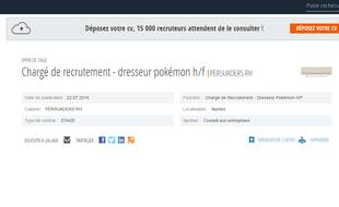 """L'offre d'emploi postée sur le site """"Cadremploi"""""""
