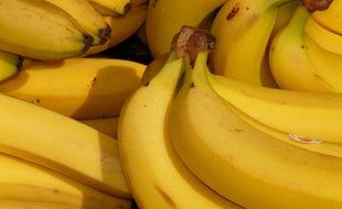 Une demi-tonne de cocaïne était caché dans un chargement de bananes.