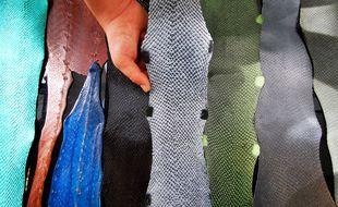 Cette entreprise française transforme les peaux de poissons en cuir