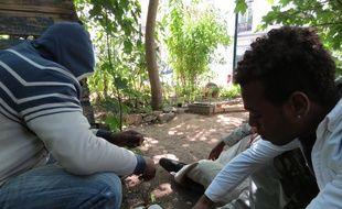 Trois migrants ce mardi matin dans le jardin partagé du Bois Dormoy dans le 18e arrondissement