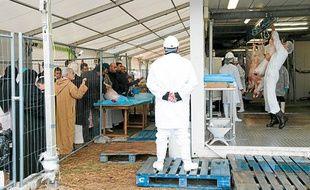 Début de l'Aïd le 7 novembre 2011 dans un abattoir mobile de La Courneuve.