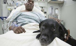 Cecil Williams et son chien d'aveugle Orlando à l'hôpital, après leur accident, le 17 décembre 2013 à New York (Etats-Unis).