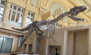Le squelette de ce dinosaure inconnu des chercheurs, sera vendu aux enchères à Paris le 4 juin. En attendant, il est exposé à Lyon