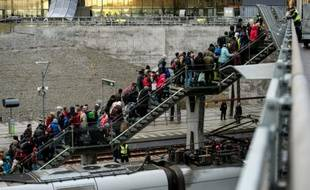 La police rassemble un groupe de migrants en provenance du Danemark, le 19 novembre 2015 près de Malmö, en Suède