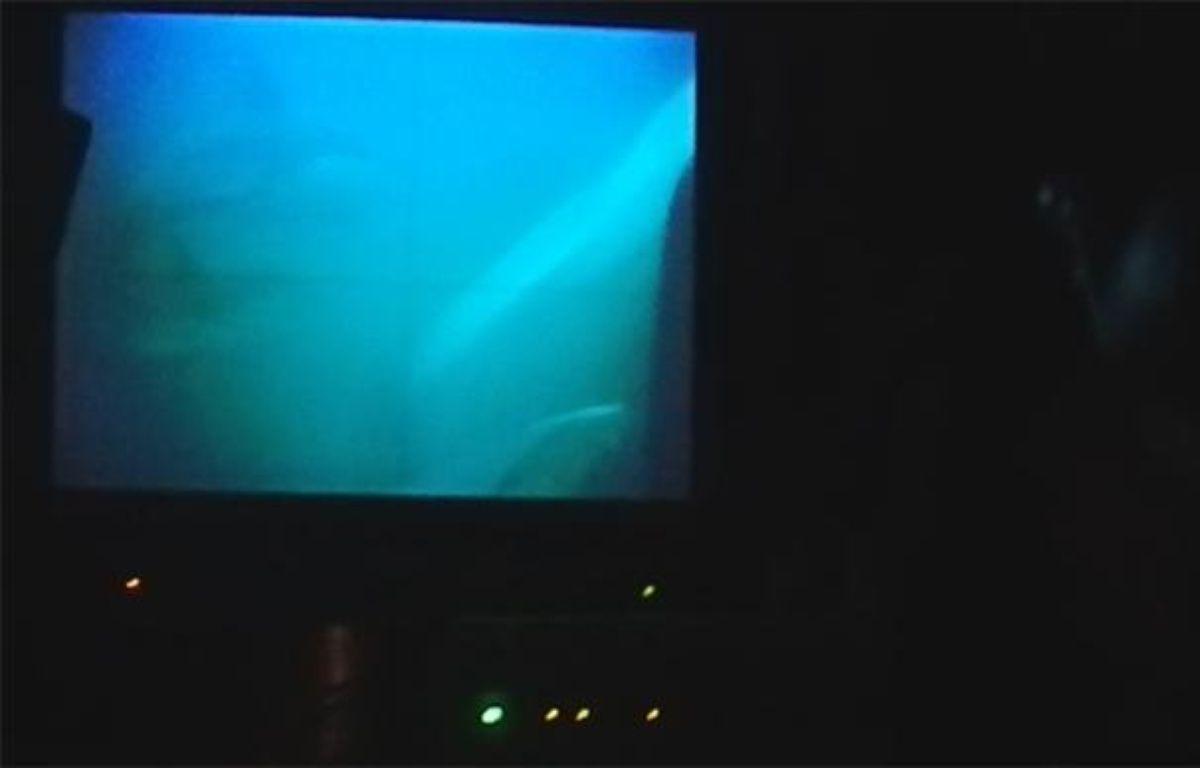 """Vue de dauphins lors d'une plongée du sous-marin nucléaire d'attaque (SNA) """"Saphir"""" le 24 septembre 2012. Photo prise du poste central opérations, sur l'écran de vue du périscope. – B. Quémar / 20 Minutes"""
