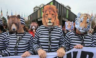 Des militants déguisés en animaux prisonniers de cirques et enchaînés devant la mairie de Strasbourg.