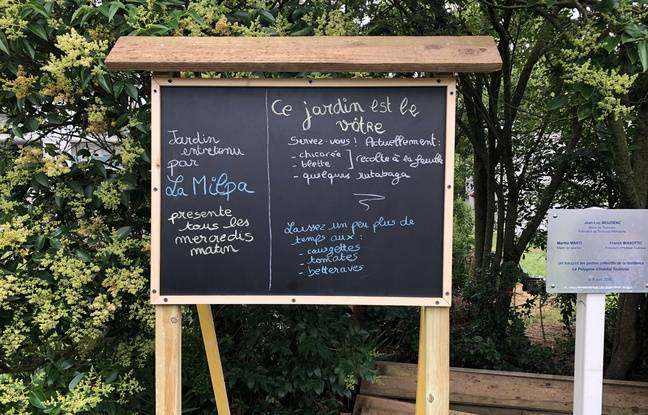 Le panneau d'information du potager d ela résidence Polygone, à Toulouse.