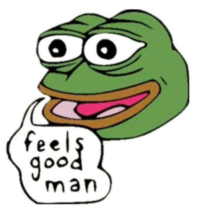 L'image qui a fait du Pepe The Frog un mème.