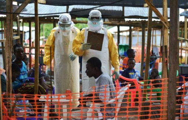 VIDEO. Ebola: Transmission, symptômes... C'est quoi le virus tueur qui menace la République démocratique du Congo?