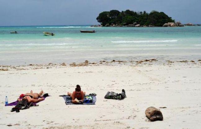 648x415 touristes bronzent plage ile praslin seychelles 6 mars 2012