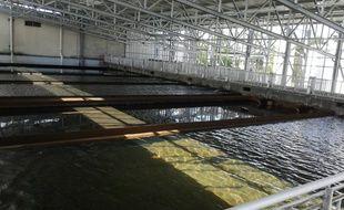 Les six bassins avec les filtres à sable ont été couverts d'une toiture pour les protéger des intrusions et contaminations.