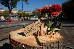 La Soleam est une société chargée notamment de réhabiliter le centre-ville de Marseille