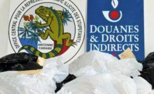 De la cocaïne saisie par l'Ocrtis à Fort-de-France le 22 juin 2010