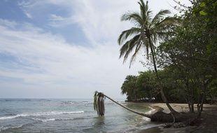 Une bouteille jetée à la mer il y a 50 ans a été ramenée à la fille de son expéditeur