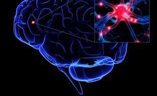 Représentation de l'activité cérébrale